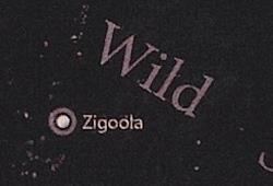 Zigoola