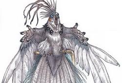 Oiseau Pylat Neimoidien