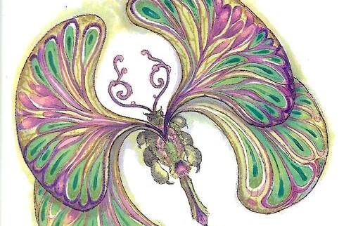 Papillon laineux