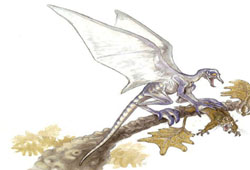 Dragon des marais