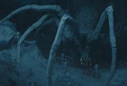 Araignée de Maldo Kreis